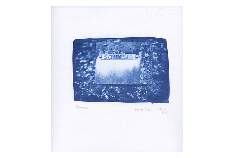 Cyanotype, procede ancien, procédés alternatifs, tirages d art, exposition, la mélodie de choses, poesie, marie bienaime, photographe lyon, artiste photographe, photographie d art, sensibilité