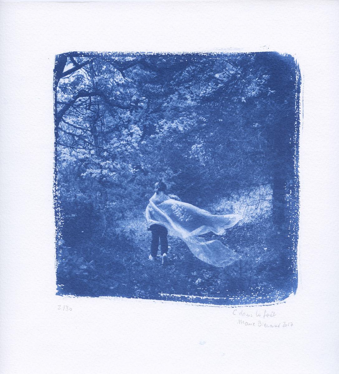 Marie bienaime artiste photographe, photographe lyon, festival photo, phemina, fontainebleau, cyanotype, exposition, art, poésie, amour