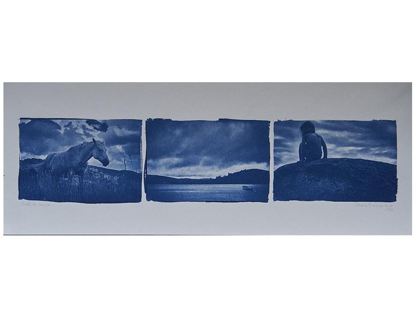 artiste photographe, avant, courcelles art contemporain, cyanotype, procédés anciens, tirages labo, Courcelles art contemporain paris, Véronique Adraï, Marie Bienaimé, photographe Lyon, photographe professionnel, artiste photographe, photographie d'art, tirage d'art, série limitée, tirage cyanotypique