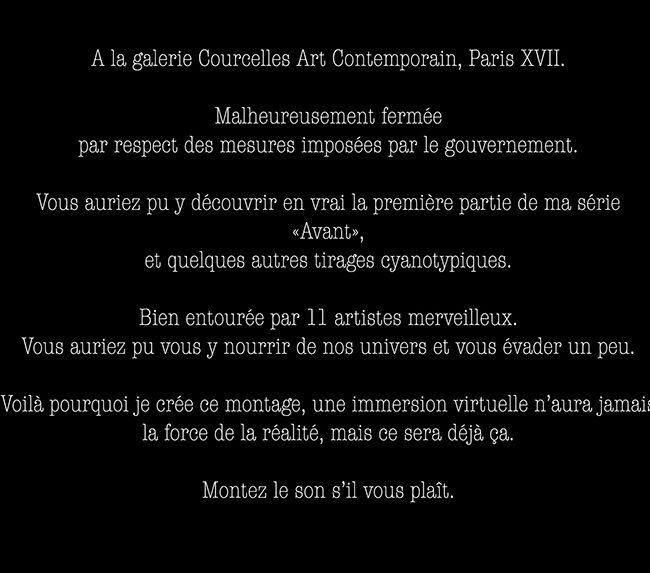 marie bienaime, photographie d'art, cyanotype, galerie courcelles art contemporain, galerie d'art, photographe lyon, photographe professionnel, carpe diem